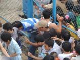 Fans even cut holes in the fences